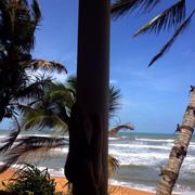 Тур на Шри-Ланку: отзыв. Наши 7 километров пляжа!