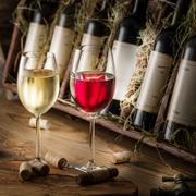 Дегустация вина: в компании друзей и в одиночку