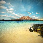 Тенерифе и Гран Канария: репортаж с Канарских островов