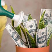 Сколько денег вы готовы принять? Привлечение денег: аффирмация и медитация
