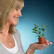 Как и когда сеять рассаду перца и еще 5 дел в феврале – для будущего урожая