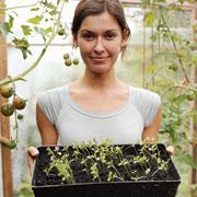 Календарь огородника: март. Выращивание рассады и обработка сада весной