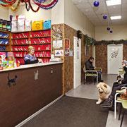 Ветеринарные клиники Москвы: обзор