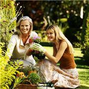 Оксана Джетер: Почвопокровные цветы