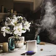 Как выбрать увлажнитель воздуха в квартиру