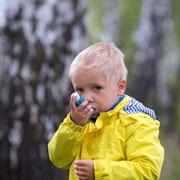 Чем кормить ребенка с аллергией во время цветения березы