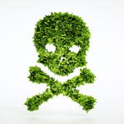 Отравления ядовитыми растениями