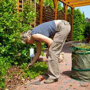 Как определить кислотность почвы по сорнякам и еще 7 вопросов об удобрении огорода