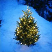 Василиса Аверьянова: Как устроить новогодний праздник?