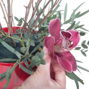 Что подарить на 14 февраля мужу или любимому: дерево любви
