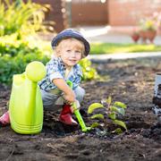 Малыш и огород