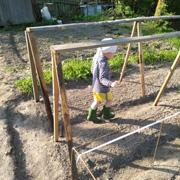 Дача – там, где живет ящерица и пекут картошку