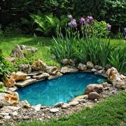 Светлана Шляхтина: Водоем в саду – это реально. Часть 1
