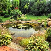 Светлана Шляхтина: Водоем в саду – это реально. Часть 2