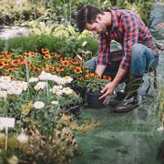 Наташа Лескова: Все в сад или в огород!