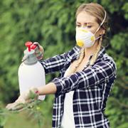 Чем опрыскивать от вредителей в начале лета: народные средства
