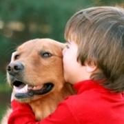 Друг по имени Дружок. Зачем ребенку собака?