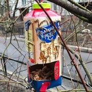 Как научить ребенка сочувствовать: делаем кормушки для птиц
