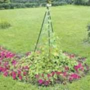Вертикальный огород: когда участок небольшой