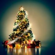 Радость. Рождественская история