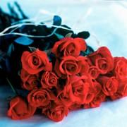 Цветы для любимого учителя