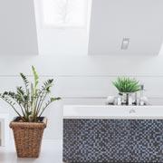 Оксана Джетер: Комнатные растения в ванной