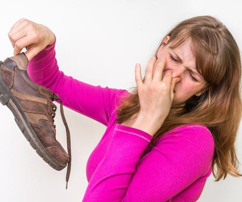 как устранить неприятный запах изо рта кошки