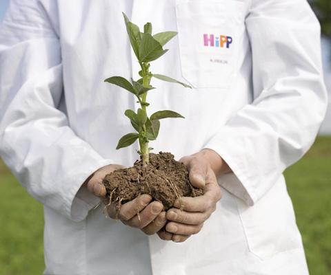 В согласии с природой: органическое земледелие – источник органического сырья