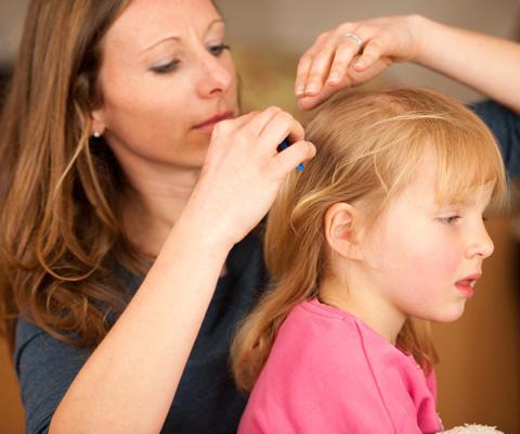 Как заражаются вшами и как вывести вшей у ребенка