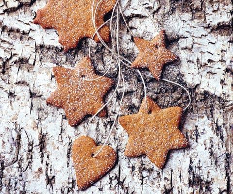 Домашнее имбирное печенье к Новому году: получается много! Простой рецепт имбирного печенья