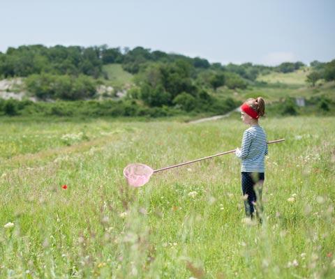 Безопасность детей летом: что делать, чтобы ребенок не потерялся на даче или в лесу?