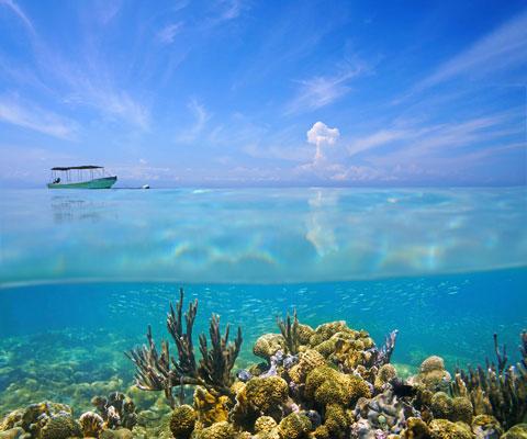 Где отдохнуть на море в мае и июне: Турция, Кипр или Тунис