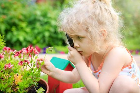 Наблюдения за растениями