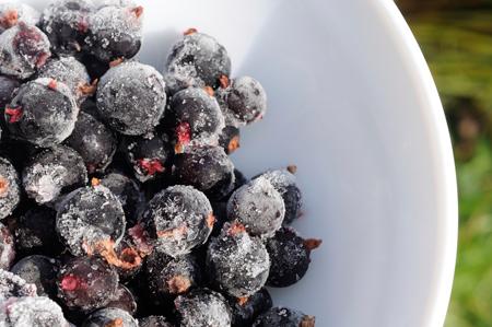 полезна ли голубика при сахарном диабете
