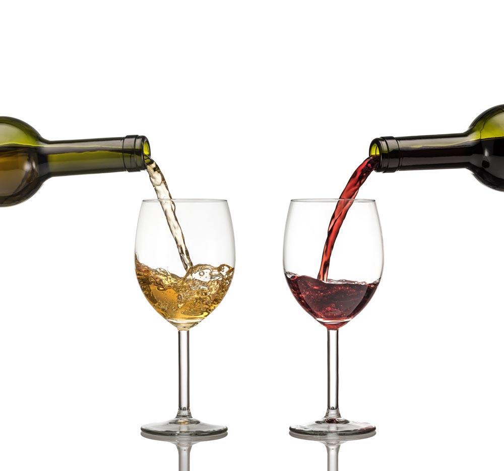 Дегустация вин на виноградниках