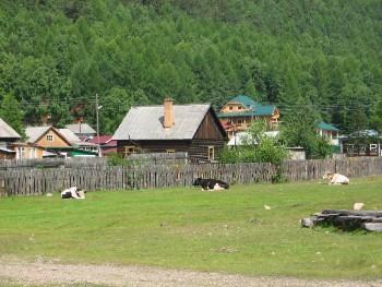 Байкал - место, где сбываются мечты!