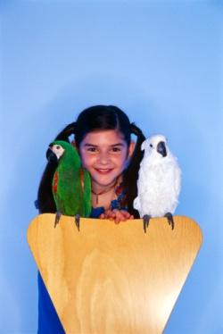 Попугаи не любят детей?