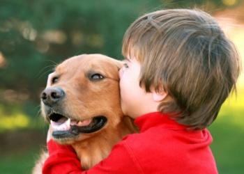 Зачем ребенку собака