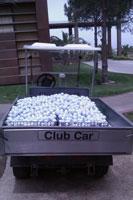 В гольф-клубе
