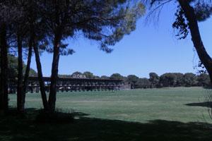 Тренировочное поле в гольф-клубе