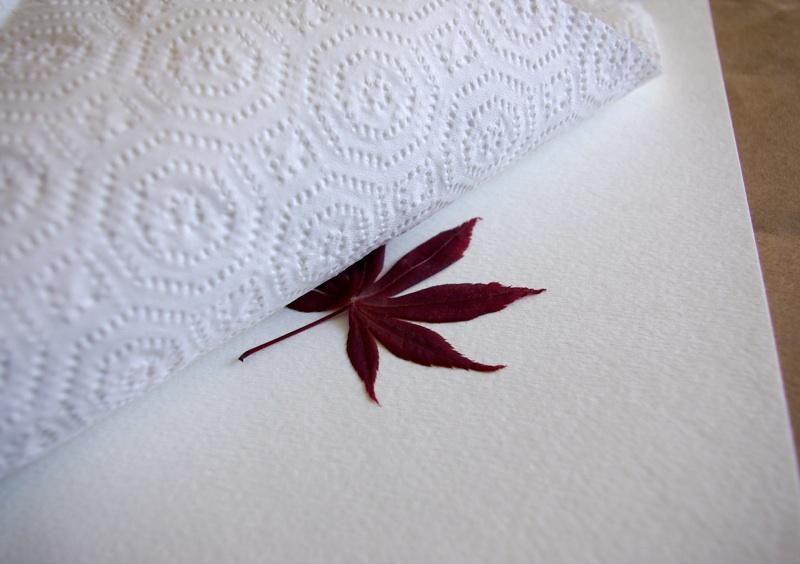 Гербарий: рисуем цветы и листья с помощью… молотка