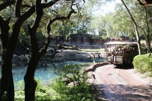 Диснейленд в Америке: поездка с детьми - как, когда и сколько стоит