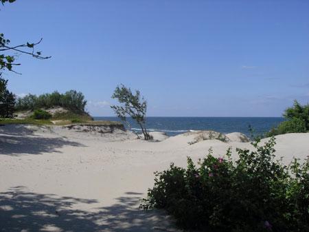 Отдых в Балтийске