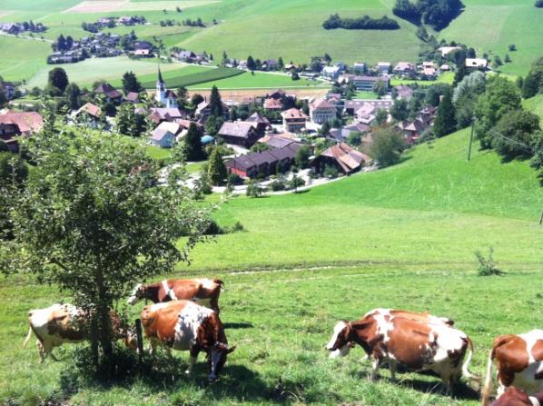 Как рождается молочная смесь. Спецрепортаж 7и из Nestle, Швейцария