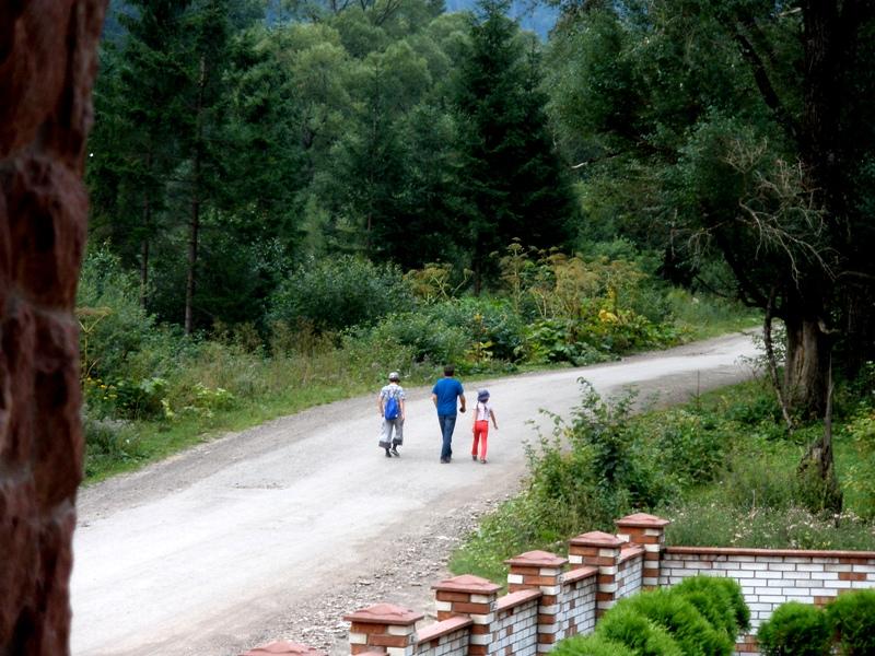 Отдых в Карпатах с детьми: букет из мяты и земляники