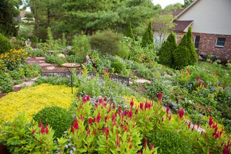 Клумбы и цветники для сада - своими руками. Какие растения выбрать?