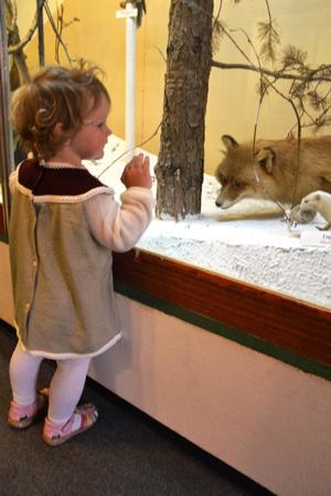 Отдых с детьми в Подмосковье: дачные радости и музеи европейского уровня