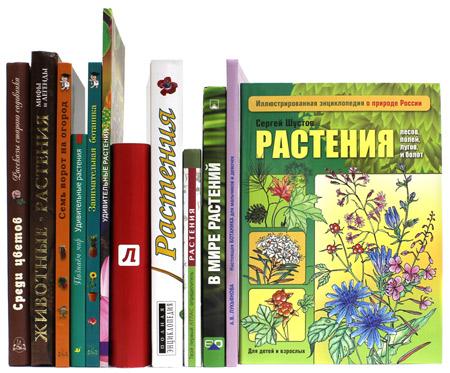 Игра в садовника, или Познаем окружающий мир с детьми