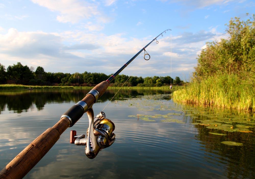 Где можно рыбачить