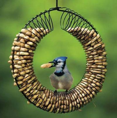 Поделки своими руками птиц